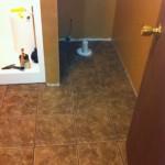 Cedar Valley Cypress tile installed